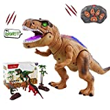 WISHTIME Dinosauro a Controllo remoto ElectricToy Kids RC Animal Toys LED Light Up Dinosaur Walking And Roaring Realistico T-Rex Robot Toys per i più Piccoli Ragazzi Ragazze